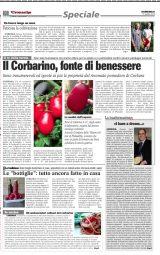 Speciale Corbarino - Le Cronache